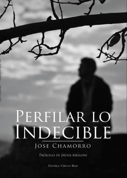 portada-perfilar-lo-Inecible-2015