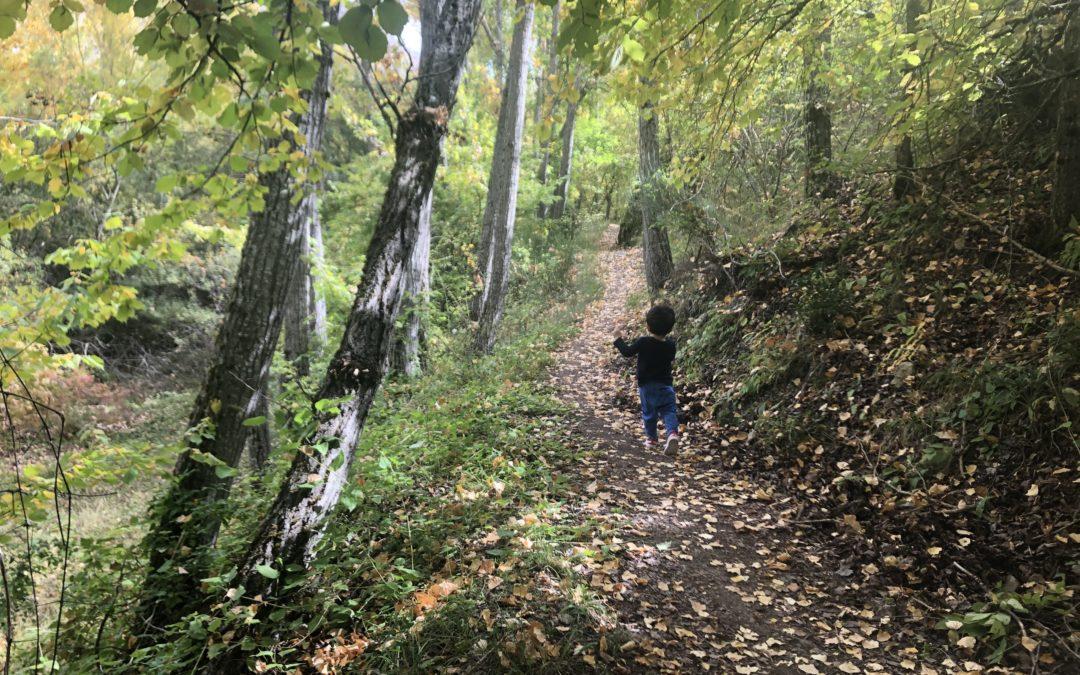 Soltar con el otoño